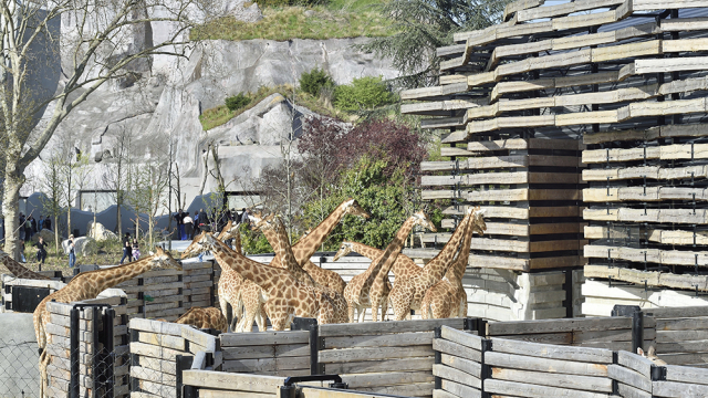 Paris Zoological Park