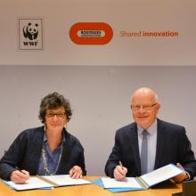 Le WWF France et Bouygues Construction renouvellent leur partenariat